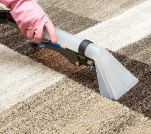 CleanDevil Teppichreinigung